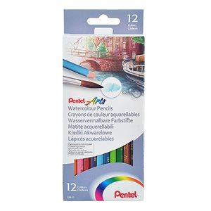 Crayons de couleurs aquarellables pqt 12